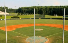 Baseball Venue2-2015